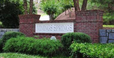 Vinings Springs