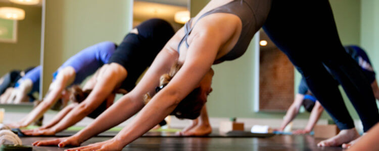Highland Yoga