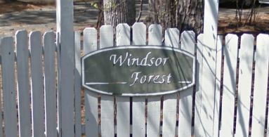 Windsor Forest