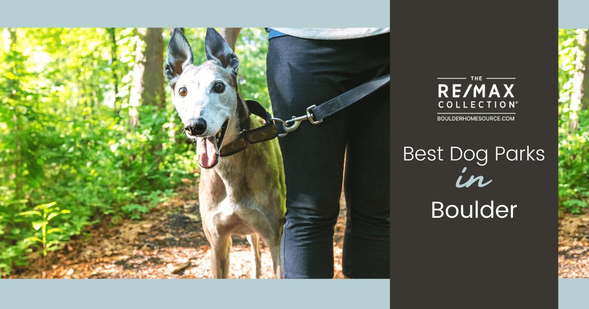 Best Dog Parks in Boulder