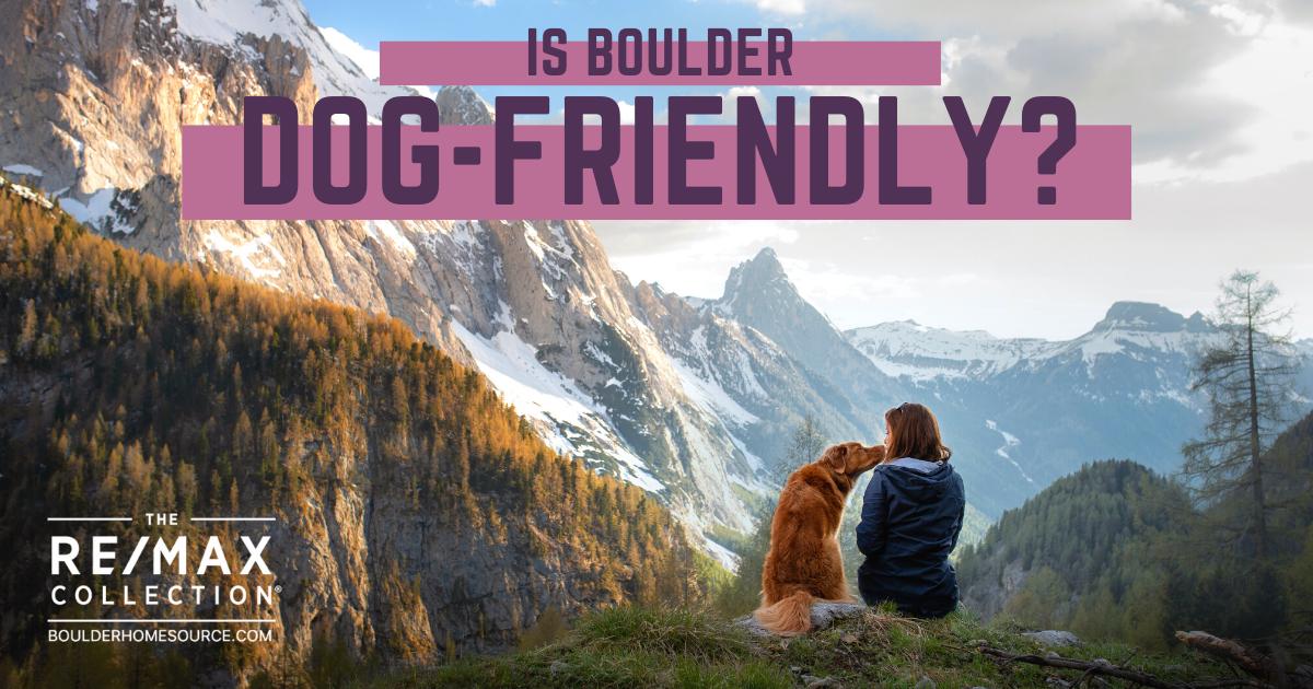 Is Boulder Dog-Friendly?