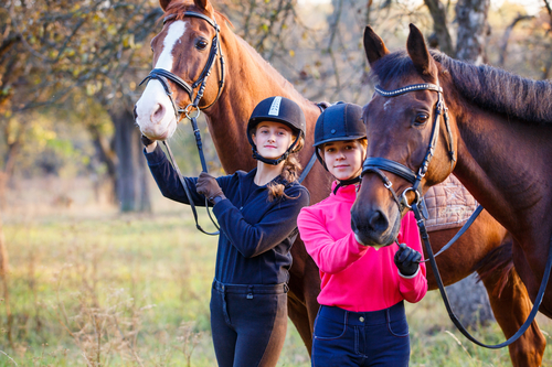 Buying Equestrian Real Estate