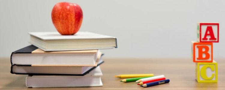 best elementary schools in Midland Ontario