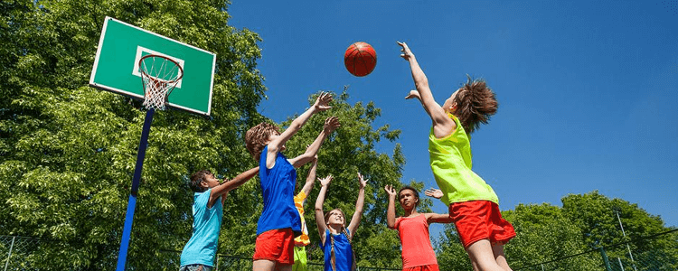 Schools niaraga falls sports