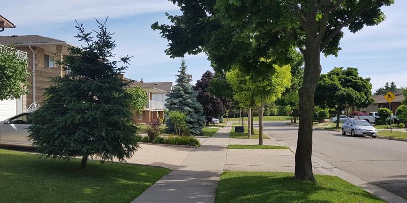 Stoney Creek Neighbourhood Hamilton Ontario
