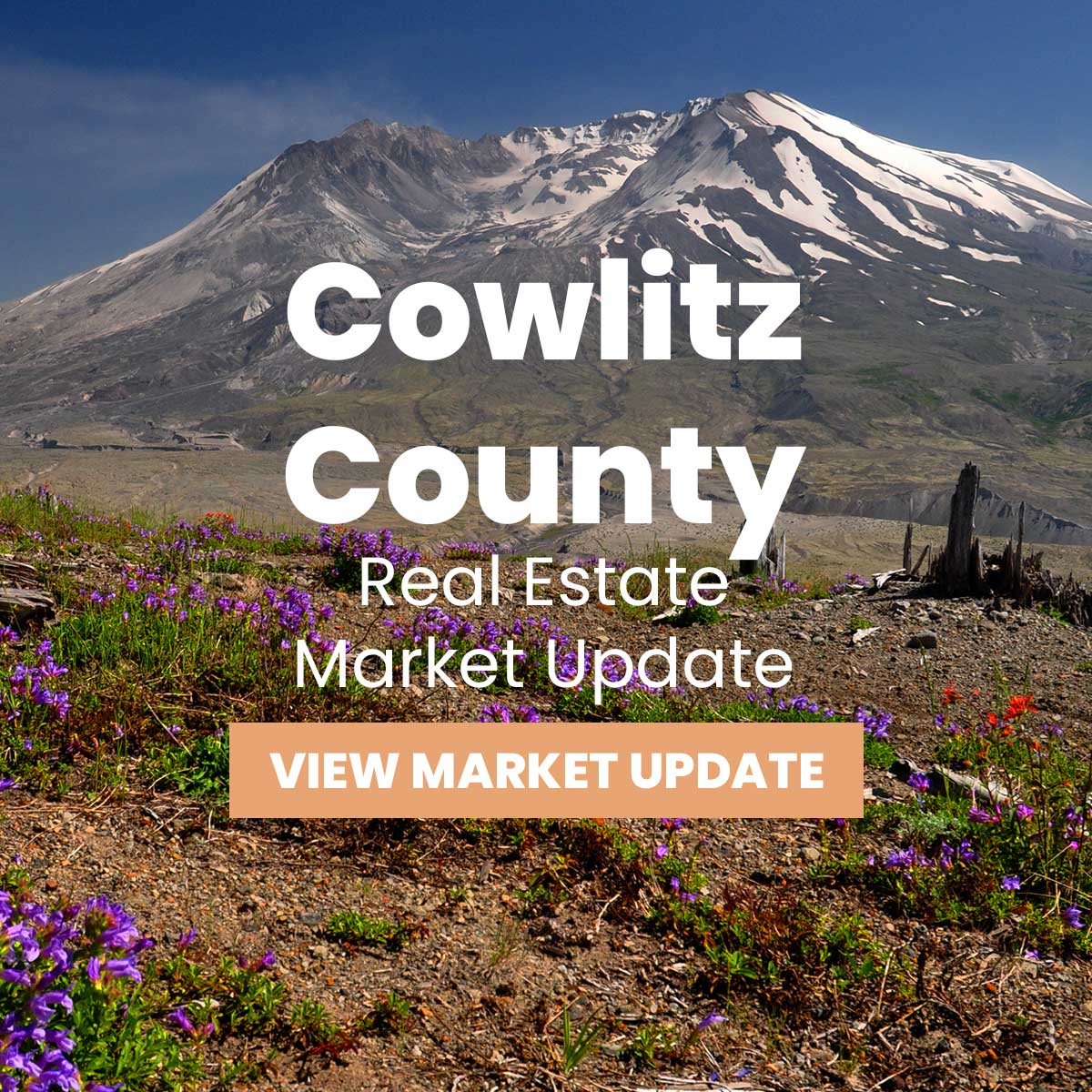 Cowlitz County Real Estate Market Update