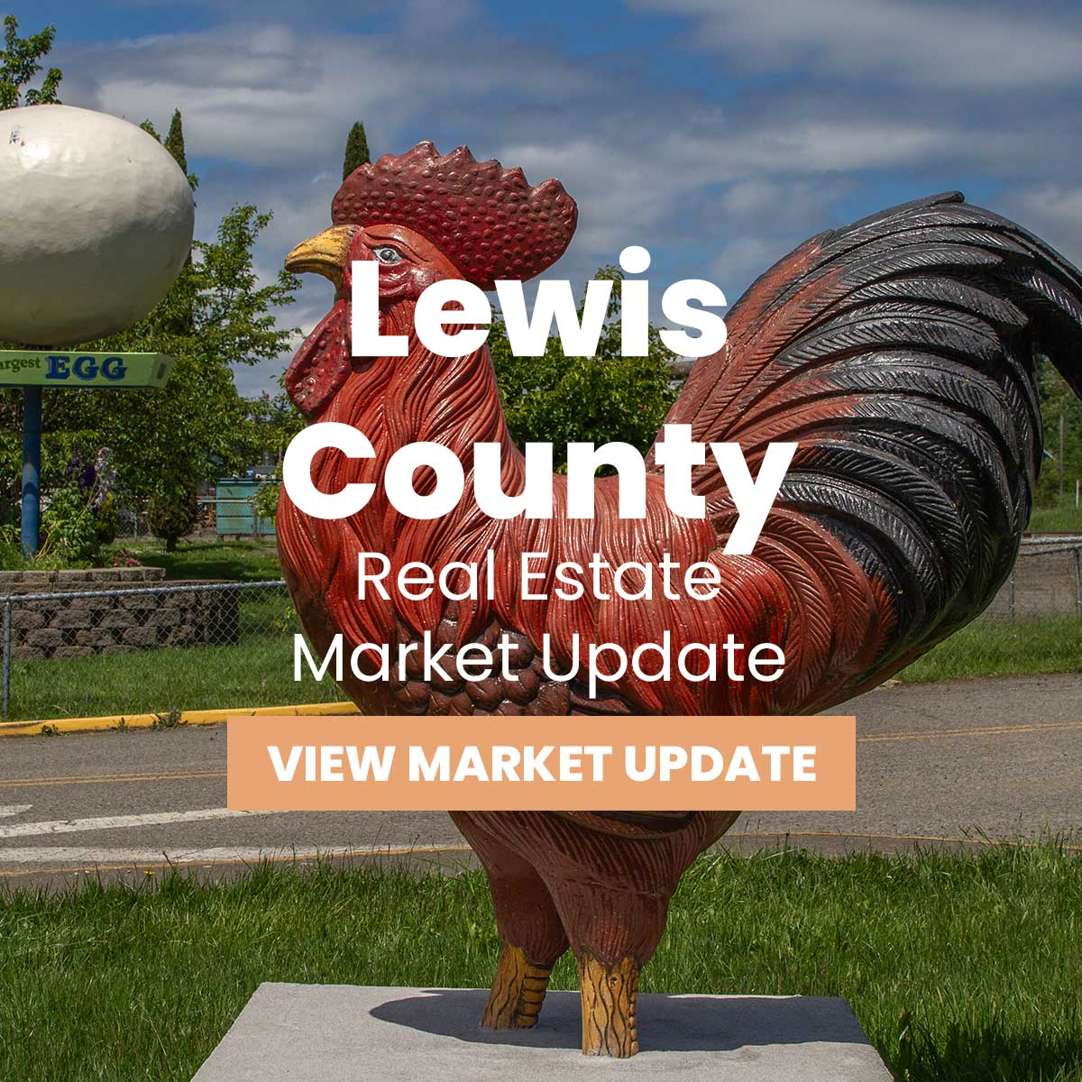 Lewis County Market Update
