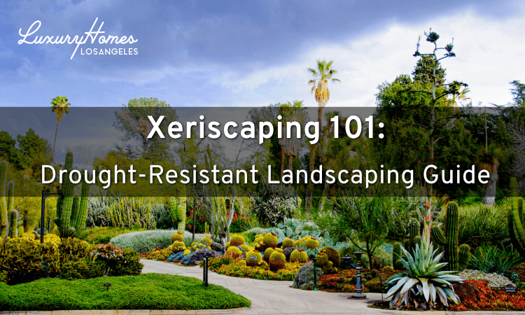 Xeriscaping 101 Drought Resistant Landscaping Guide