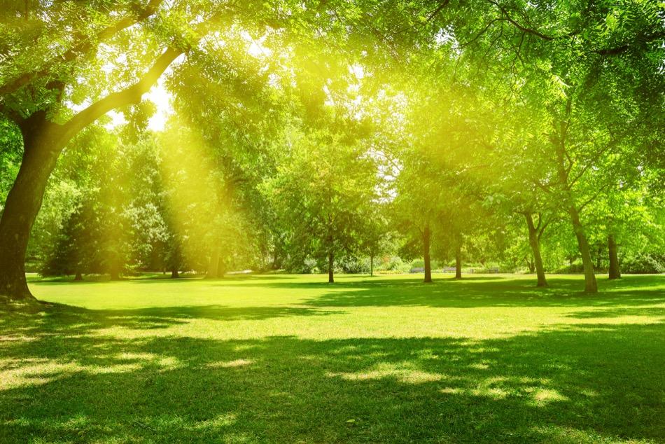Best Parks in Cedar City, UT