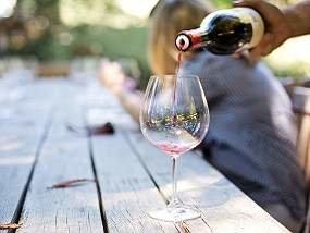 Grapevine Wine Tasting