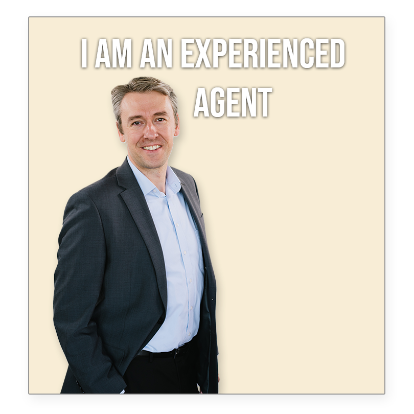 I am an experienced agent
