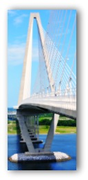 Arthur Ravenel Bridge in Charleston SC