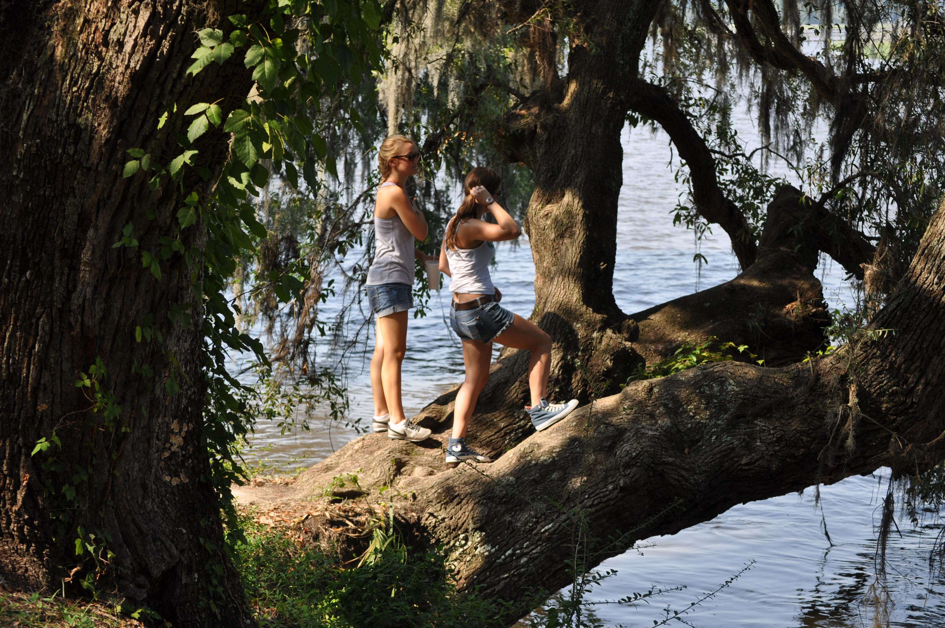 Visit Magnolia Plantation Charleston SC