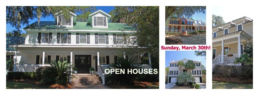 Mt. Pleasant SC Homes for Sale