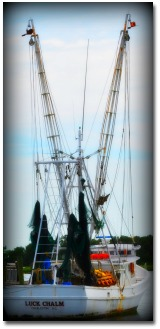Shrimp Boat on Folly Beach SC!
