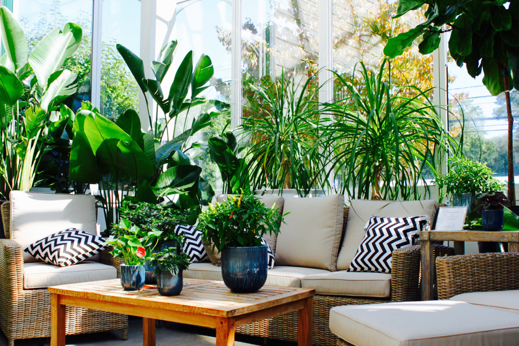 Classic Luxury Design Trends for Floridians
