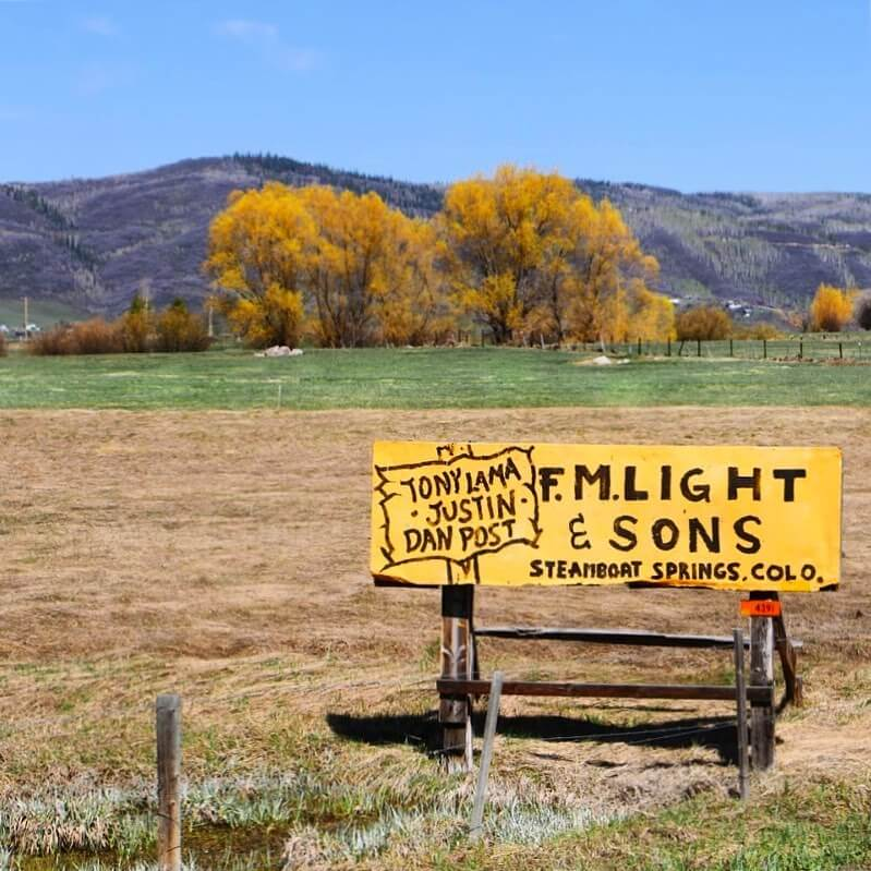 Yellow Hand Painted FM Light and Sons Signs in the Middle of A Field in Steamboat Springs Colorado