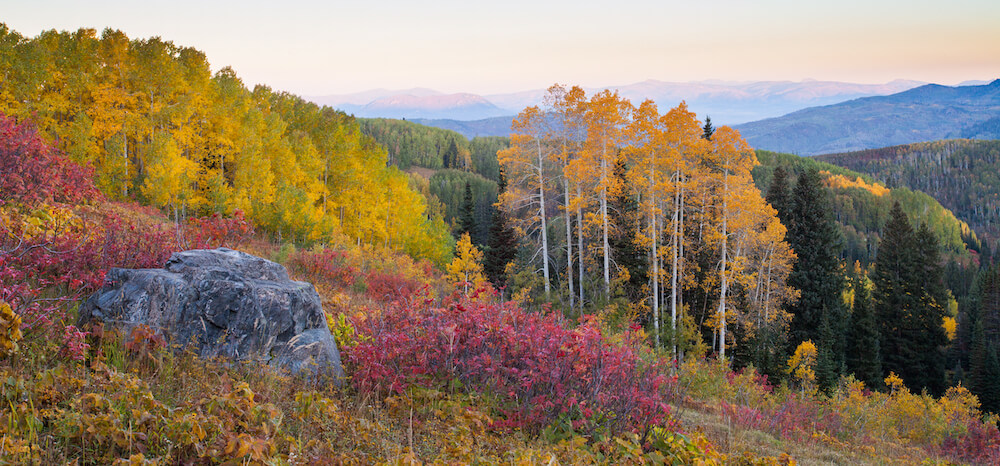 Fall colors in Steamboat Springs CO