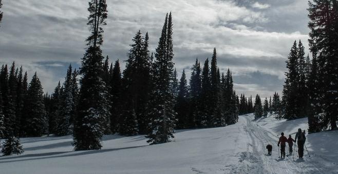 Snow skiing in Steamboat Springs Colorado