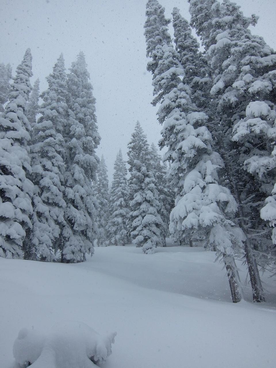 snow1_1280.