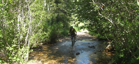 steamboat_mountain_biking_480