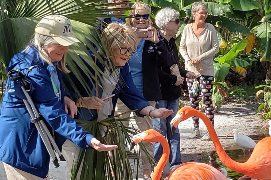 Everglades Wonder Garden