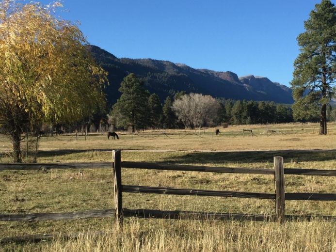 Animas Valley Horse Real Estate