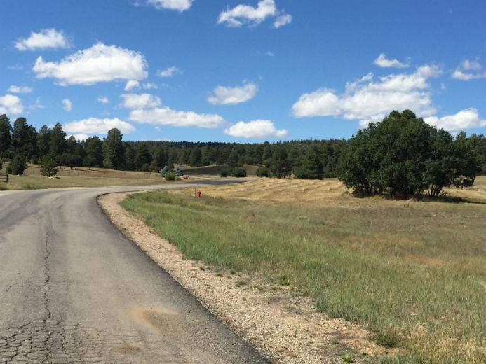 Durango Foreclosed Real Estate