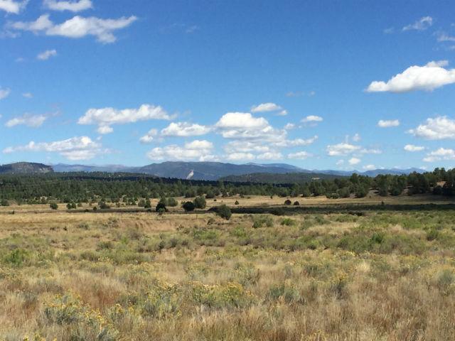 Durango Land & Lots For Sale