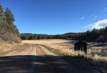 Bell Flower Ranch
