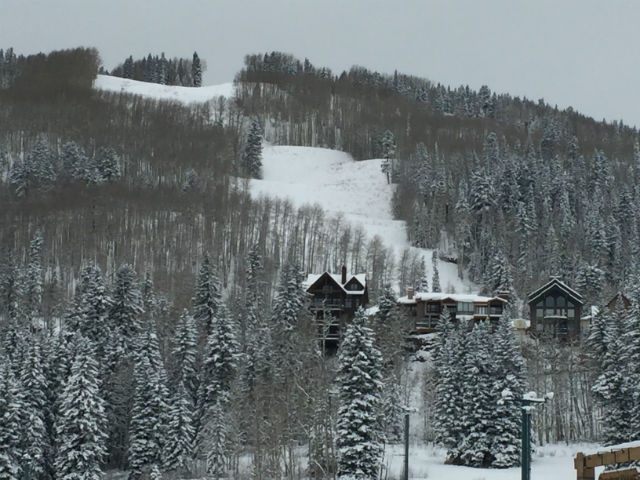 Resort Area Ski In/Out Real Estate