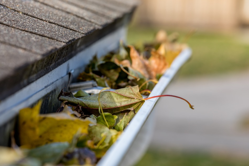 How to Clean & Maintain Your Home's Gutters