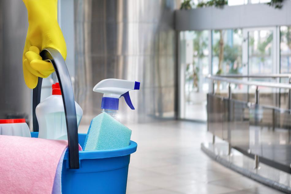 Equipment for Cleaning Mold at Home