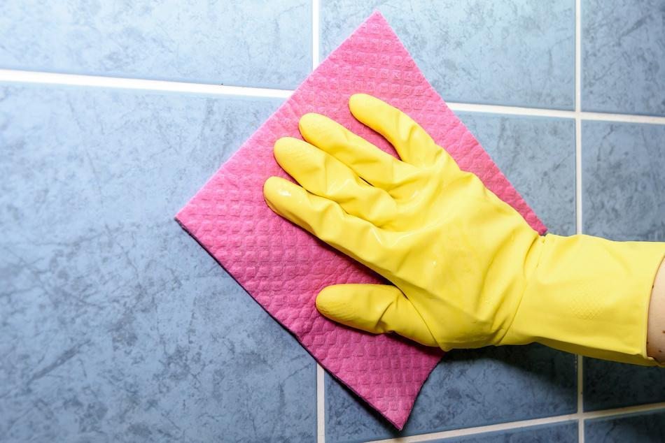 How to Prevent Mold From Growing at Home
