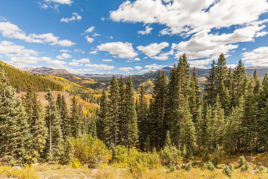 Beaver Creek Ranch - Bayfield CO