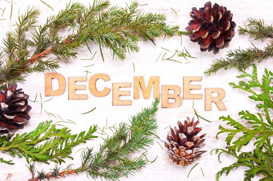 Winter Fun in Durango, Colorado: Where to Be this December