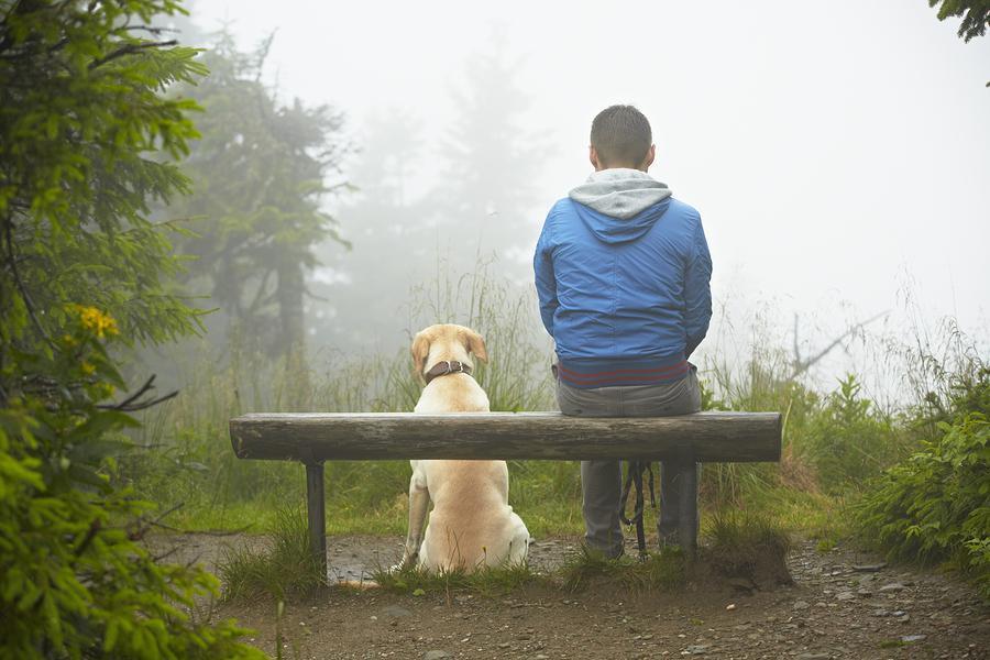Dog-Friendly Durango