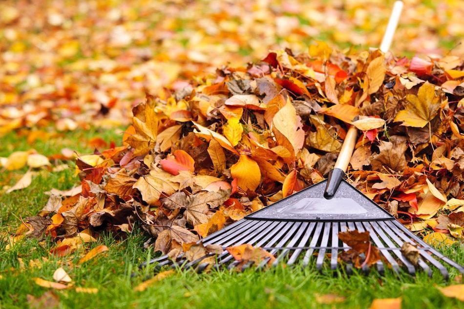 Fall Home Preparation