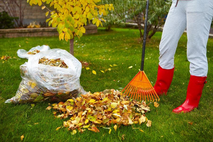 Fall Landscaping Tips For Durango Home Owners