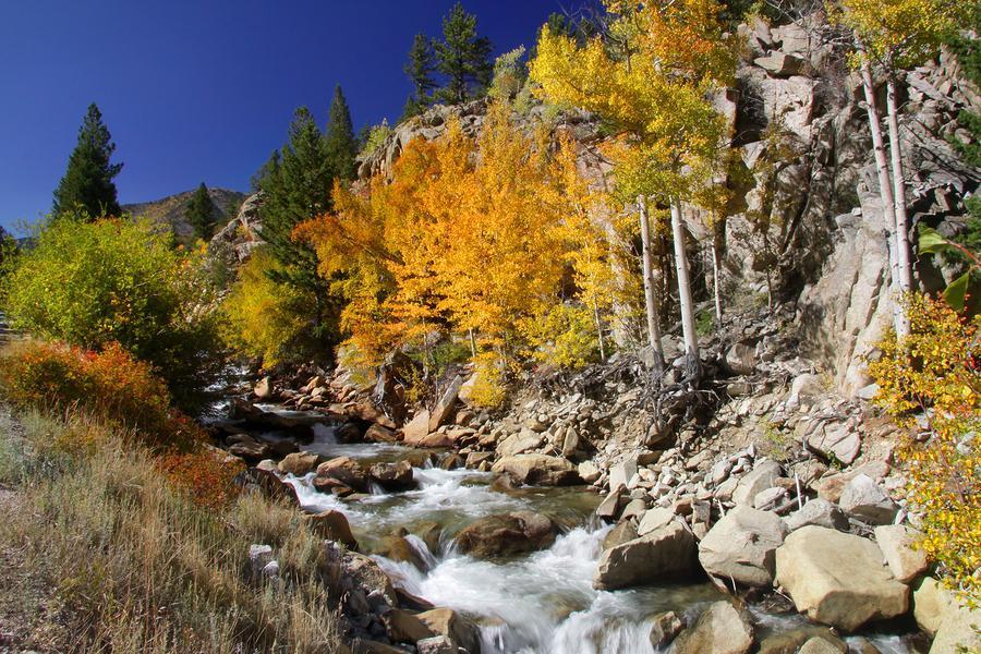 Living in Durango