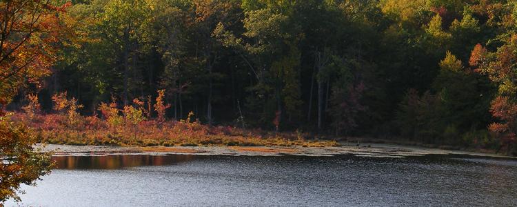 Crystal Lake Pond