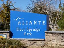 Aliante Park