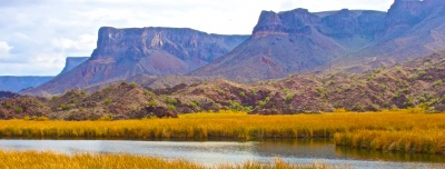 Bill Williams National Wildlife Refuge