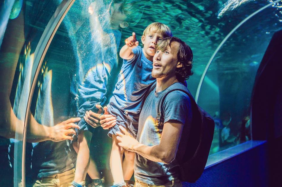 Best Kid-Friendly Activities in Las Vegas | Family Fun In Vegas