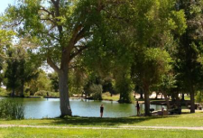 Centennial Hills Fishing