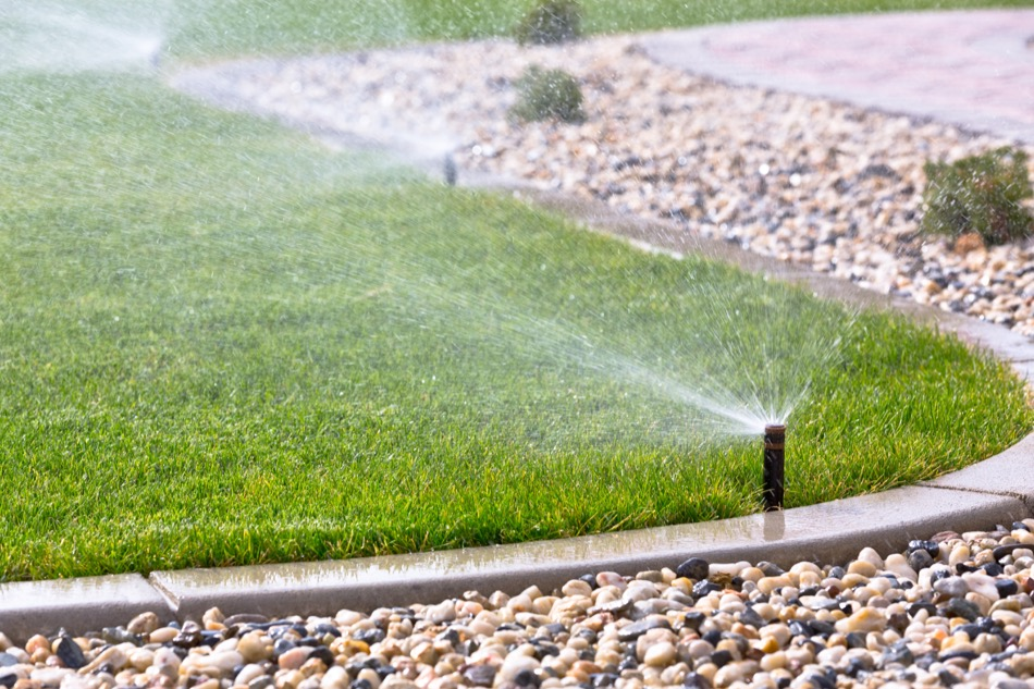 How to Irrigate Your Yard for Best Results