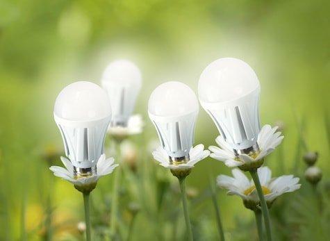 Home Light Bulbs