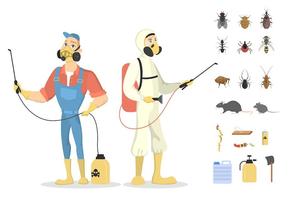 What to Know About Common Pests