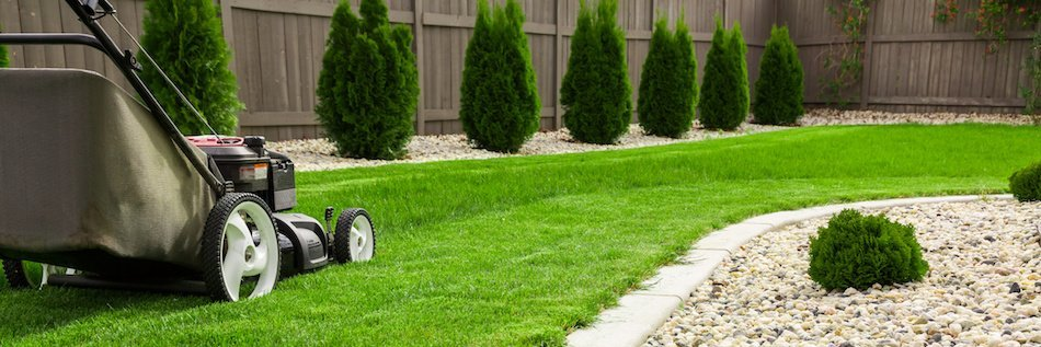 Lawn Upgrade Tips to Help a Home Sale