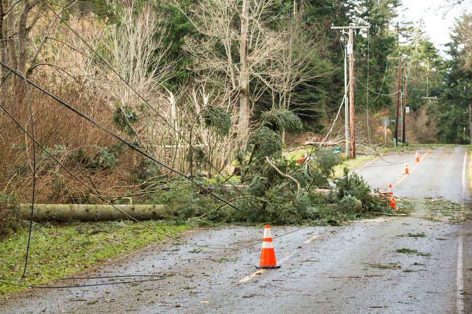 Dangers After a Storm